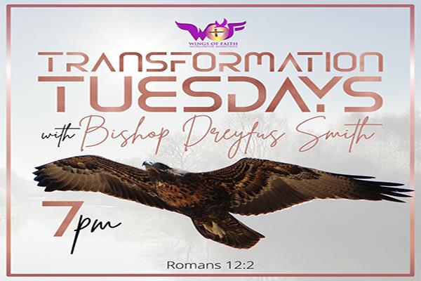 Transformation Tuesdays!